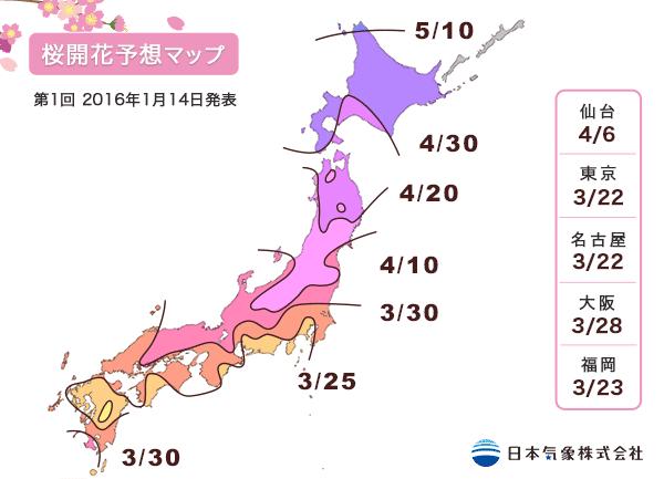 2016年第1回桜開花予想マップ
