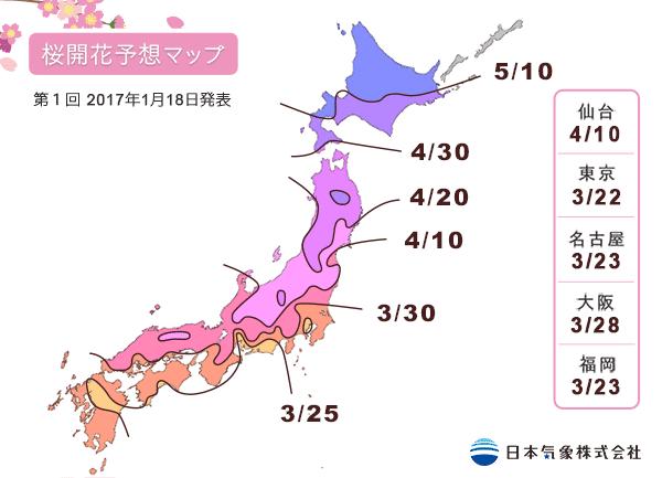 floraison sakura japon 2017