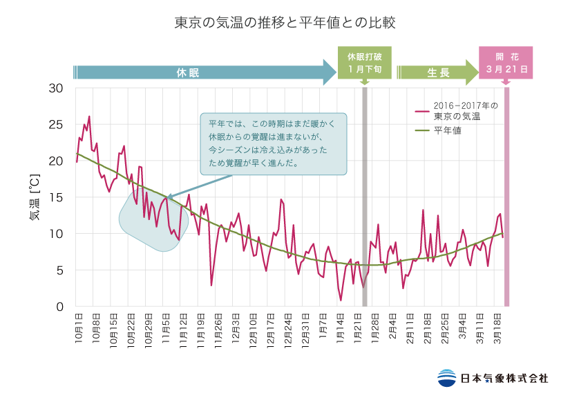 東京の気温の推移と平年値との比較